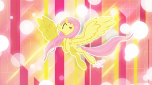 Fluttershy My Little Pony 2560x1440 Wallpaper