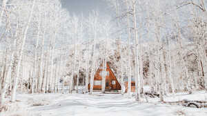Winter Nature Cottage White Snow Pastel Forest Landscape 1500x1000 Wallpaper