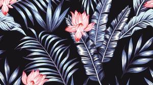Flowers Vector Night Jungle Leaves Pattern 6000x6000 Wallpaper