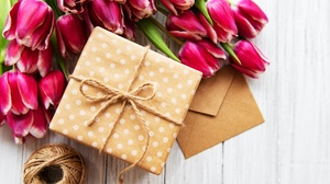 Flower Gift Pink Flower Still Life Tulip 5455x3901 Wallpaper