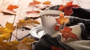 Coffee Cup Leaf Still Life 3500x2333 Wallpaper