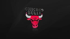 Basketball Chicago Bulls Logo Nba Sport 2560x1600 Wallpaper