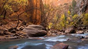 Fall River Rock Stone Tree 2048x1367 wallpaper