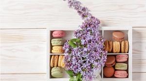 Flower Lilac Macaron Still Life Sweets 5583x3722 wallpaper