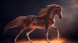 Animal 2560x1788 Wallpaper