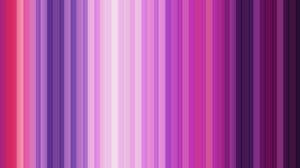 Lines Pink Purple 2560x1600 Wallpaper