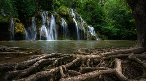 Nature Landscape Forest Trees River Moss Roots Stream 1920x1080 Wallpaper
