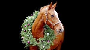Christmas Ornaments Horse 3840x2160 Wallpaper