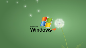 Dandelion Artwork Logo Operating System Windows XP Microsoft Windows 1600x1200 Wallpaper
