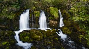 Nature Landscape Rocks Forest Trees Moss Water Stream 1920x1080 Wallpaper