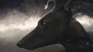 Creature Dog 1920x1280 Wallpaper