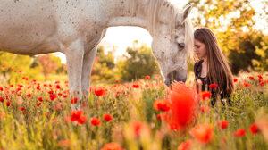 Brunette Depth Of Field Flower Girl Horse Long Hair Model Mood Poppy Red Flower Summer Woman 2048x1366 Wallpaper