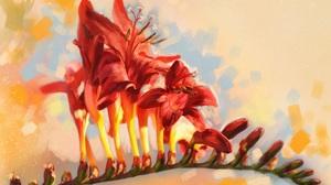 Artistic Flower 1920x1296 Wallpaper