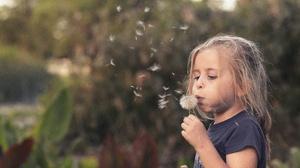 Blonde Child Dandelion Depth Of Field Girl Little Girl 5716x3788 Wallpaper