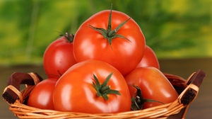 Food Tomato 2560x1600 Wallpaper