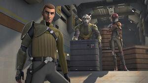 Kanan Jarrus Sabine Wren Star Wars Rebels Zeb Orrelios 2000x1125 Wallpaper