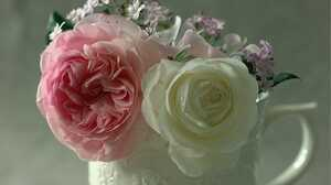 Flower Pink Flower Pitcher Still Life White Flower 2000x1411 Wallpaper