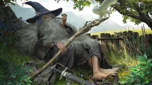Artwork Fantasy Art Men Wizard Fantasy Men Staff Owl Birds Smoking Barefoot Hat Beard Plants Gandalf 1920x1372 Wallpaper