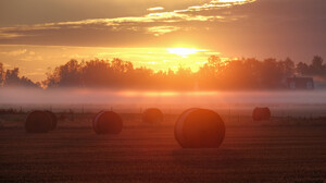 Nature Summer Field Sunrise Fog 2048x1152 Wallpaper