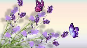 Butterfly Purple 1920x1200 Wallpaper