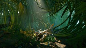 Tyler Smith Digital Art Bamboo Birds Forest 3500x1896 Wallpaper