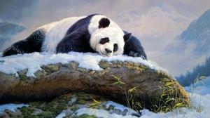 Artistic Sleeping Painting 4139x2209 Wallpaper