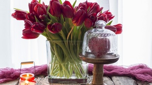 Candle Flower Red Flower Still Life Tulip 5135x3648 Wallpaper