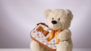 Bag Stuffed Animal Teddy Bear 4968x3312 Wallpaper