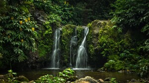 Azores Earth Forest Green Portugal Rock Waterfall 4500x2710 Wallpaper