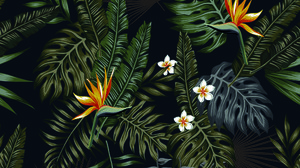 Abstract Flowers Vector Night Jungle Leaves Pattern 2126x2126 Wallpaper