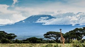 Africa Giraffe Volcano 2048x1365 Wallpaper