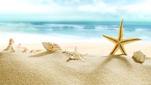 Beach Close Up Depth Of Field Ocean Sand Shell Starfish 5000x3430 Wallpaper