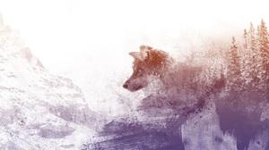 Artistic Mountain Winter Wolf 3840x2160 Wallpaper