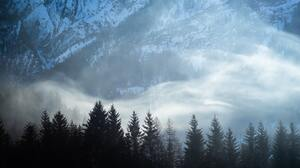 Landscape Forest Trees Mountains Snow Nature 4892x3266 Wallpaper