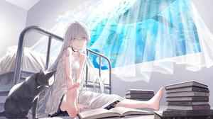 Anime Girls Cats Room Books Window Bionekojita Barefoot Feet Dress Silver Hair Blue Eyes 2497x1375 Wallpaper