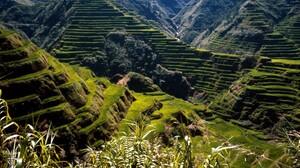Mountains Rice Paddy Rice Fields Landscape Terraced Field 1999x1333 Wallpaper