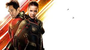 Ant Man Evangeline Lilly Hope Pym Marvel Comics Paul Rudd Scott Lang Superhero Wasp Marvel Comics 18620x13200 Wallpaper