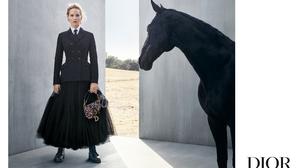 Actress American Blonde Horse Jennifer Lawrence 5197x3366 Wallpaper