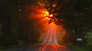 Road Sunbeam Sunset Tree 2200x1465 wallpaper