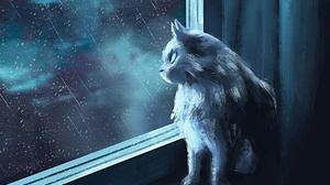 Artistic Cat Rain Window 1920x1493 Wallpaper