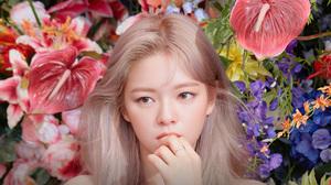 Twice JeongYeon Asian Women Dyed Hair Flowers Singer Twice 3840x2160 Wallpaper