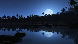 Beach Blue Night Palm Tree Shore Tropical 2560x1600 Wallpaper