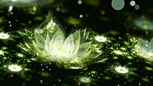 Artistic Flower Green Fractal Digital Art 1920x1080 Wallpaper