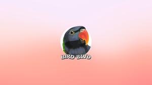 Lord Derby 039 S Parakeet Parakeet Bird Vector 2560x1440 Wallpaper