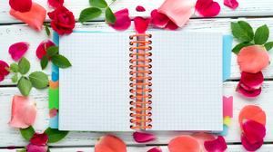 Notebook Petal Flower Colors 4130x2748 Wallpaper