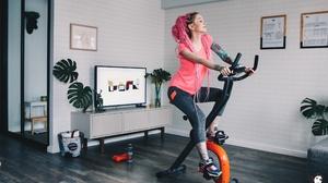 Women Pink Hair Tattoo Long Hair Living Rooms TV Plants Frame Dreadlocks Braided Hair Exercise 2432x1621 Wallpaper