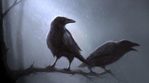 Bird Crow Raven 1920x1080 Wallpaper