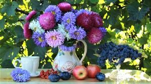 Flower Fruit Grapes Outdoor Pitcher Still Life Teacup 2400x1555 Wallpaper