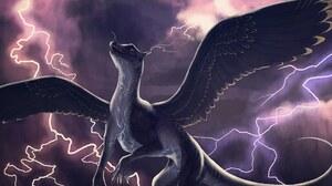 Fantasy Dragon 2384x1362 wallpaper