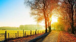 Fall Fence Field Nature Road Sunlight 2560x1600 Wallpaper